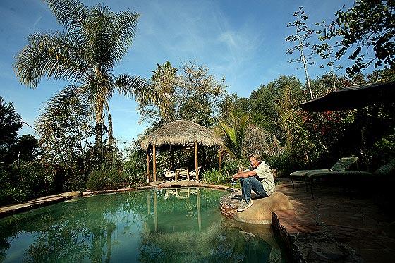 Natural Organic Swimming Pools – Expanding Horizons Blog